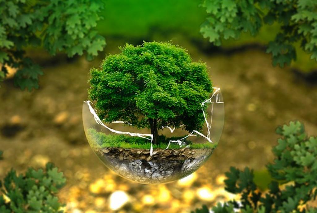 miljøvenligt